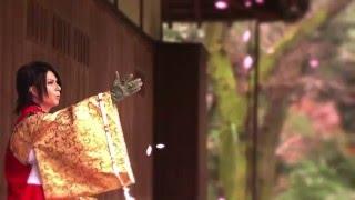最上川司 - ひとひらの桜