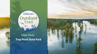 Delaware's State Parks: Trap Pond State Park