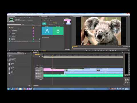 Adobe Premiere Pro CS6 Tutorial: Basic Editing