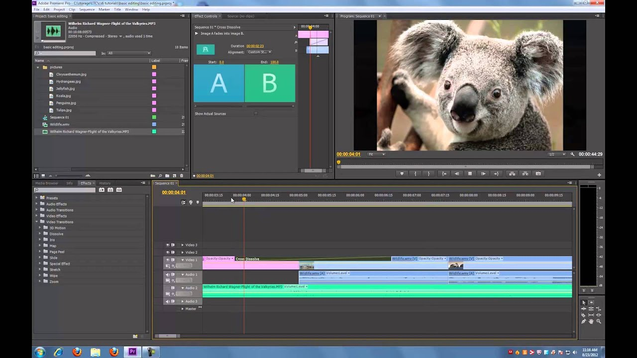 Adobe premiere pro cs6 tutorial basic editing youtube baditri Choice Image