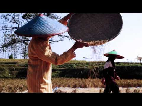 The Stocker - Menunggu Mati (Official Music Video)