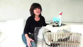 Dog Training Tip - Paws For A Minute™ With Inger - Puppy Potty Training Tip