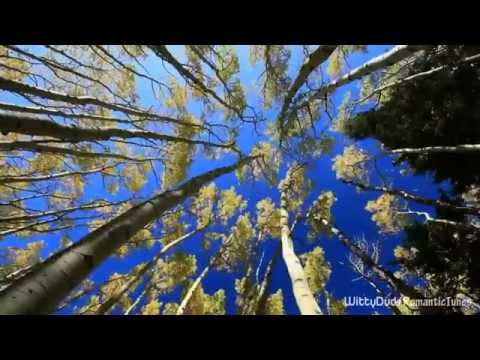 Itzhak Perlman - Méditation from Thaïs | Autumn visuals