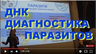 ДНК Диагностика Паразитов Человека, Доклад на Hackathon, Kiev