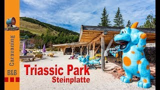 Tirol Camp - Fieberbrunn/ Steinplatte - Triassic Park