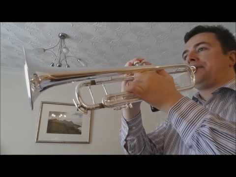 Wedding March - Mendelssohn. Trumpet solo with organ video.