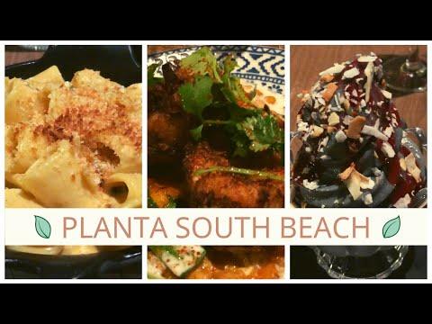 Vegan Dinner at Planta South Beach in Miami FL