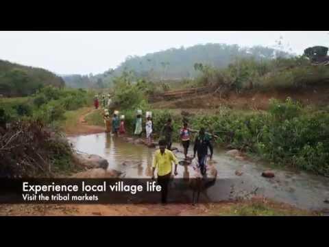 Authentic Travel Experiences in Odisha India