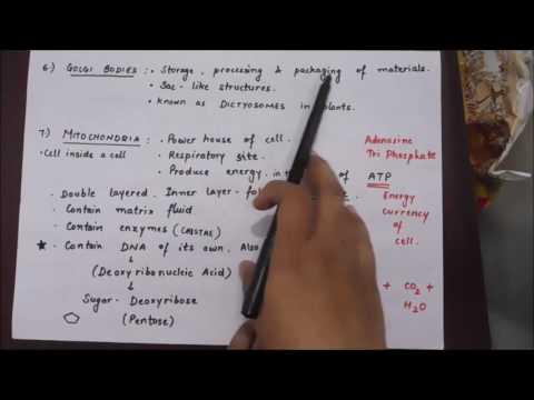 Cell theory part 2 ssc cgl chsl loco pilot railway