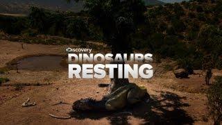 SO CUTE: Sleeping Dinosaurs!!