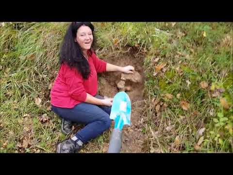 Silexknolle ausgraben an der Grotte de Rouffignac