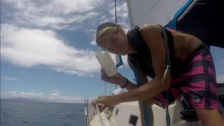 Solo Sailor girl vs Dinghy Thief ...with a side of hurricane Issac