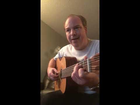 Minutemen Cohesion Guitar