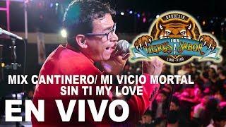 Mix Cantinero -  Mi Vicio Mortal  - Sin Ti My Love !!!  Los Tigres Del Sabor Concierto Sechura 2017