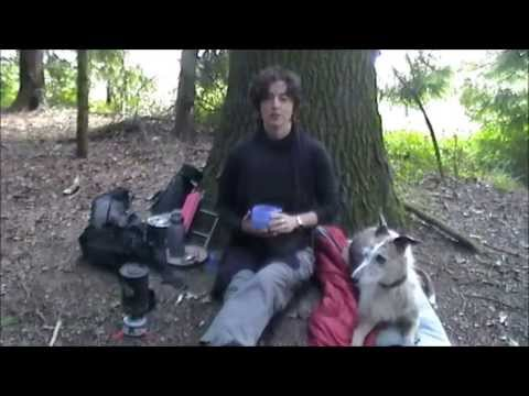 SOLO WILD CAMP IN WOODS