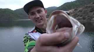 ОКУНЬ ЗА КИЛОГРАММ Ловля басса на спиннинг Рыбалка на Кипре
