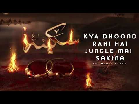 Download Kya Dhoond Rahi Hai Jungle Mein  Sakina I Ali Mehdi Sayed