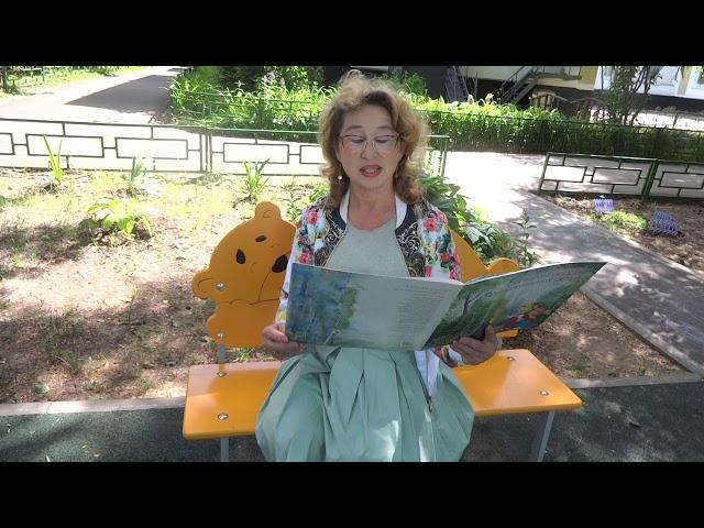 Изображение предпросмотра прочтения – СуфияЮнусова читает произведение «Бабочка» А.А.Фета