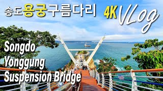 [와인과 여행] 부산 송도용궁구름다리 개통 Busan …