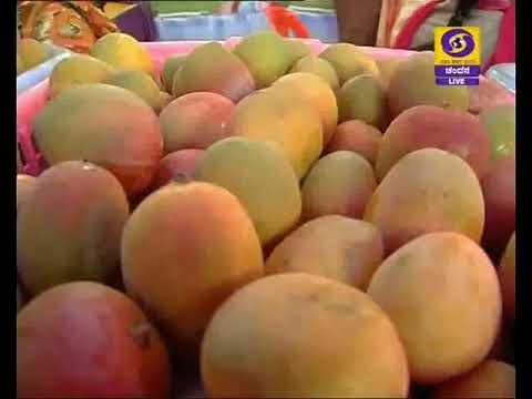 "Mango Mela-platform for producers & consumers""."