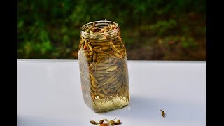 chilli pickle recipe