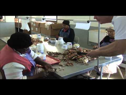 Nandua Seafood