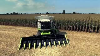 видео кукурузные жатки продаж