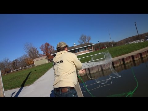 Catching Shad + Baitfish & River Fishing!
