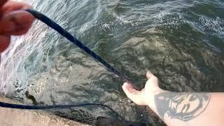 Магнитная рыбалка удивила Поисковый магнит F300 Много находок