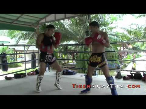 Roger Huerta returns to Tiger Muay Thai  MMA Training Camp, Phuket, Thailand