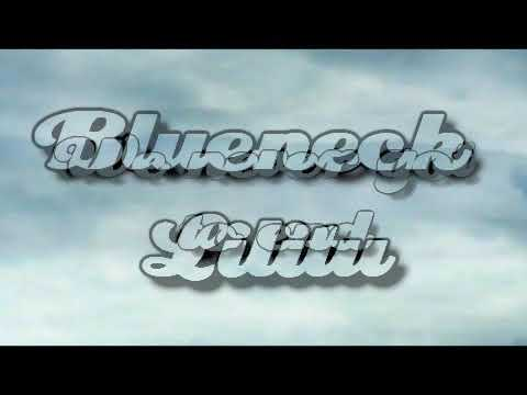 Blueneck - Lilitu [Lyrics on screen]
