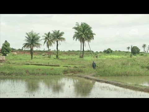 Ouganda, Promotion de l'énergie propre