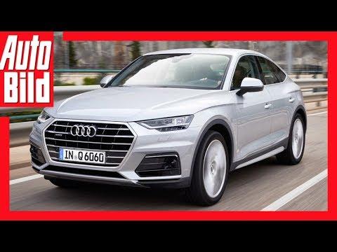 Audi Q6 2019 Audis Q Reihe Wächst Auto Bild