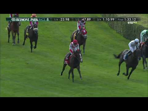 Bricks and Mortar - 2017 Manila Stakes