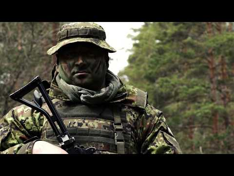 Brothers in Arms – British and Estonian Troops Renew Their Bond in the Baltics