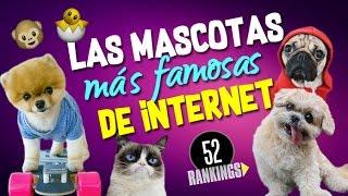 LAS MASCOTAS MÁS FAMOSAS DE INTERNET