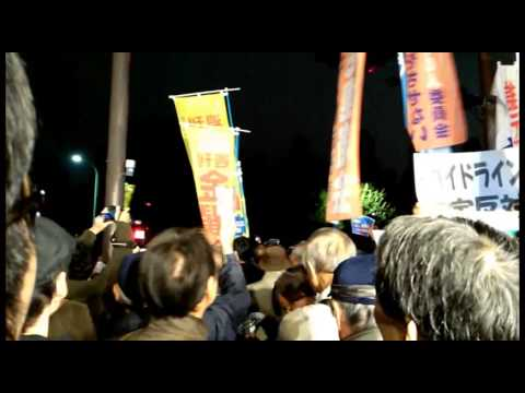 Japanese Occupy. Anti-government action in Tokyo. November 11, 2014
