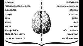 Как разбудить сверхвозможности Вашего мозга