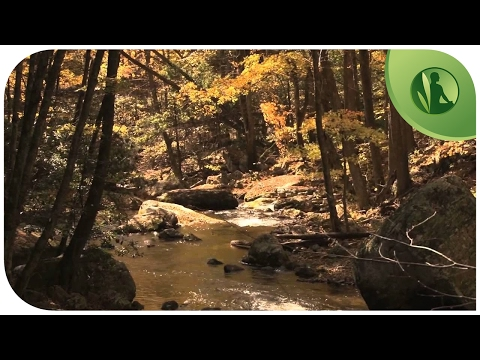 Music Anti-Depression and Anxiety, Balance Chakra with Nature Sounds