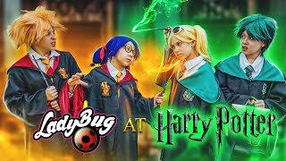 Ladybug at Hogwarts! Marinette fell in love with Harry Potter! Chloe's love potion!