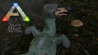 WIR BRAUCHEN FLEISCH - Let's Play ARK: Survival Evolved #2 | Indie Game