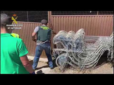 Detido un veciño de Moraña cunha plantación de marihuana de case mil plantas