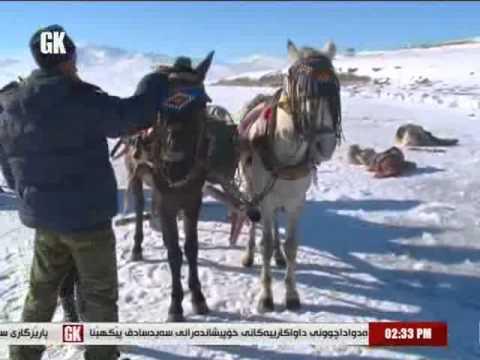 BAJARÊ QERSÊ ( Gali Kurdistan TV / Rengên Bakur Programı / KARS Bölümü) FULL