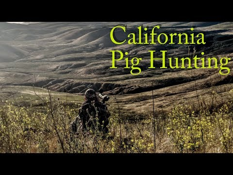 Southern California Pig HUNTING!