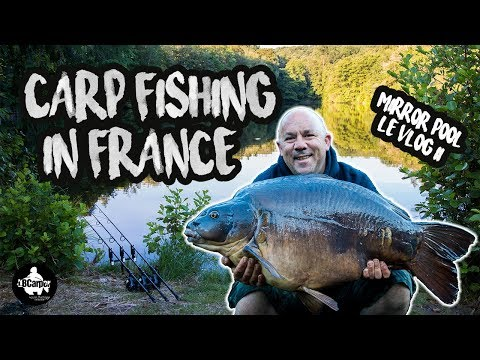 CARP FISHING IN FRANCE - MIRROR POOL - LÉ VLOG 2