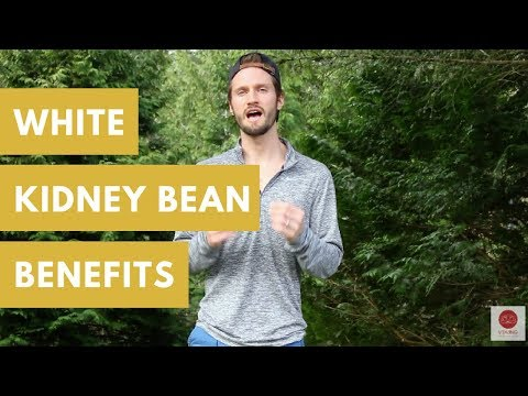 White Kidney Bean Benefits: Burn Fat, Anti-Cancer & More