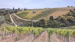 Brunello di Montalcino - Tuscany - Italy