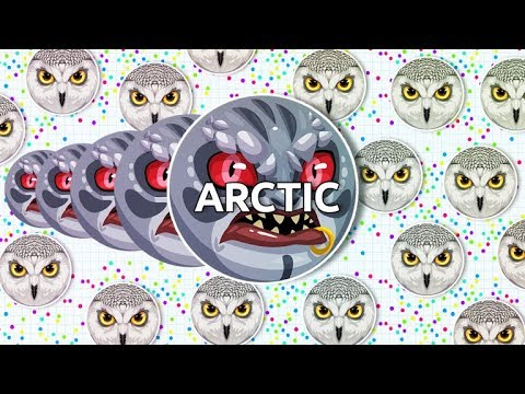 THE LEGEND ARCTIC IS BACK // UNCUT WITH BANG AND ROYAL (Agar.io)