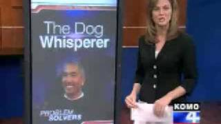 Are The Dog Whisperer's Methods Harmful ?