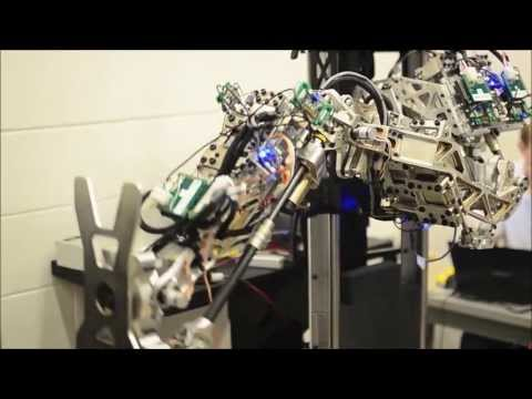 Meet the Teams: DARPA Robotics Challenge Track A Robots